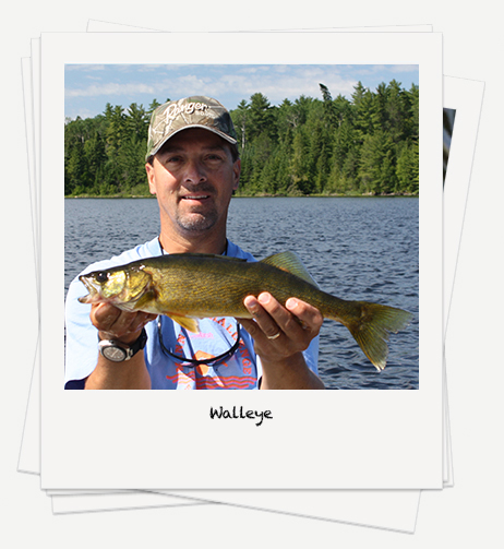 Walleye fishing on Rowan Lake
